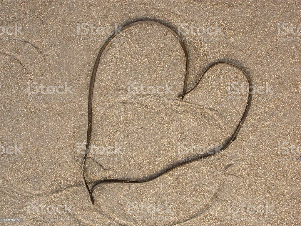 Seaweed Heart royalty-free stock photo