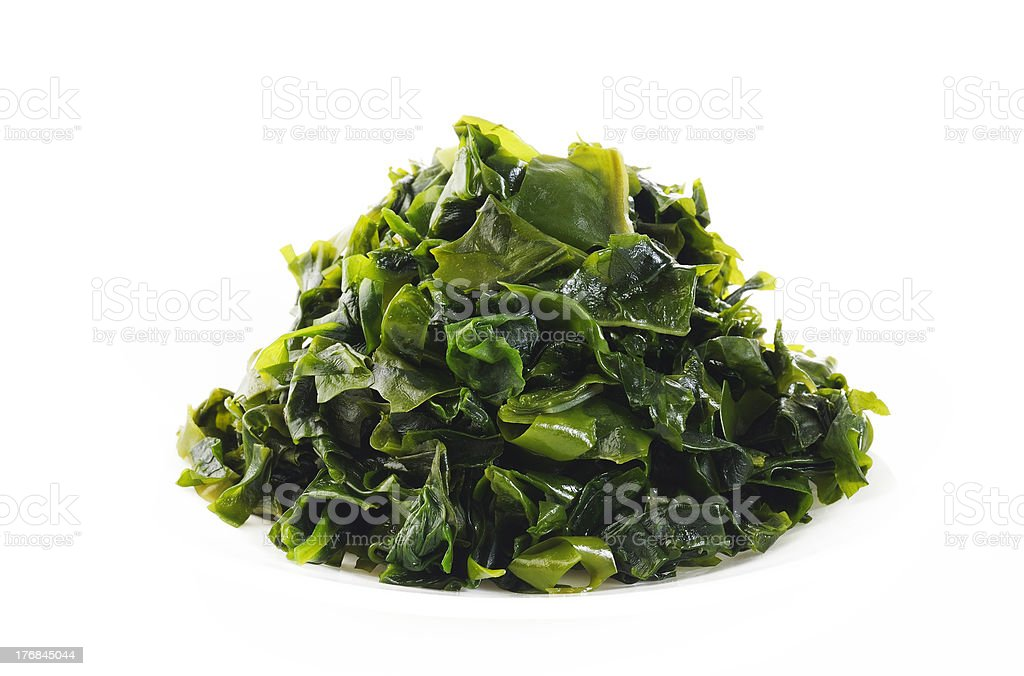 Seaweed on white background stock photo