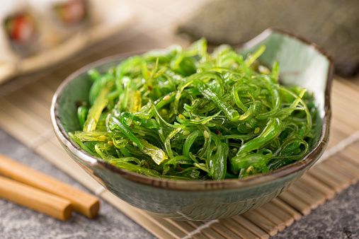 Seaweed isolated on white pure background. Green kelp for decoration fish tank.