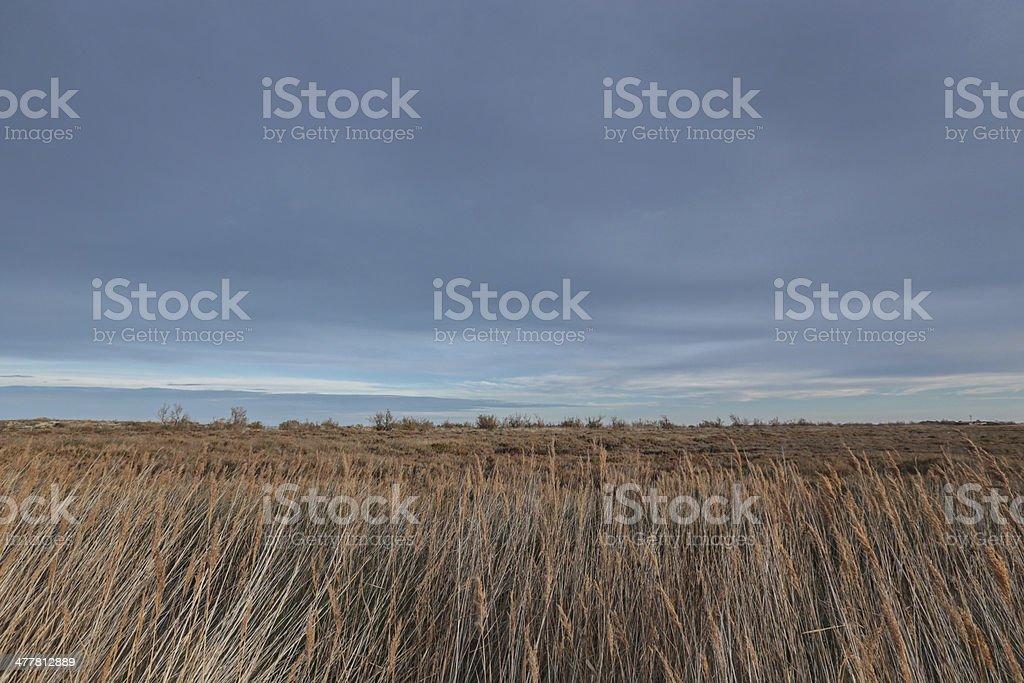 Secano stock photo