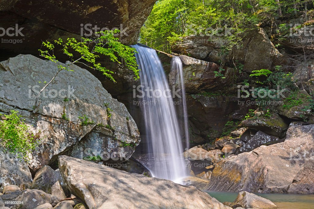 Secluded Falls in a Verdant Canyon stock photo