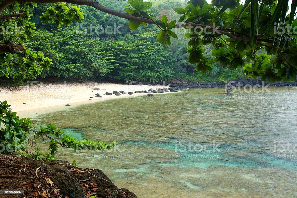 Secluded Hawaiian Beach stock photo