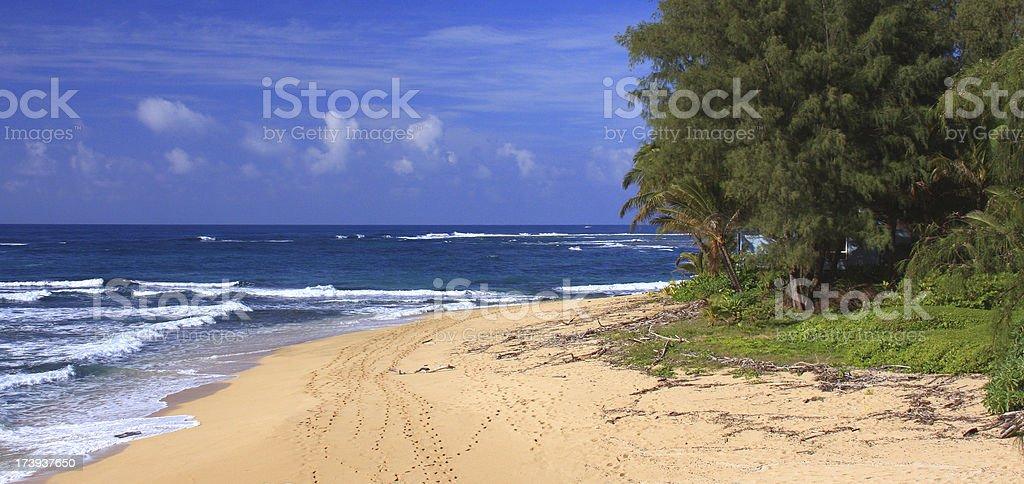 Secluded Kauai Hawaii beach panorama scenic stock photo