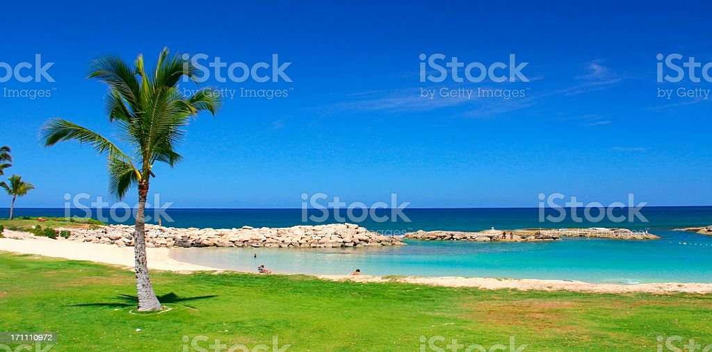 Secluded Oahu Hawaii Pacific ocean palm tree beach scenic royalty-free stock photo