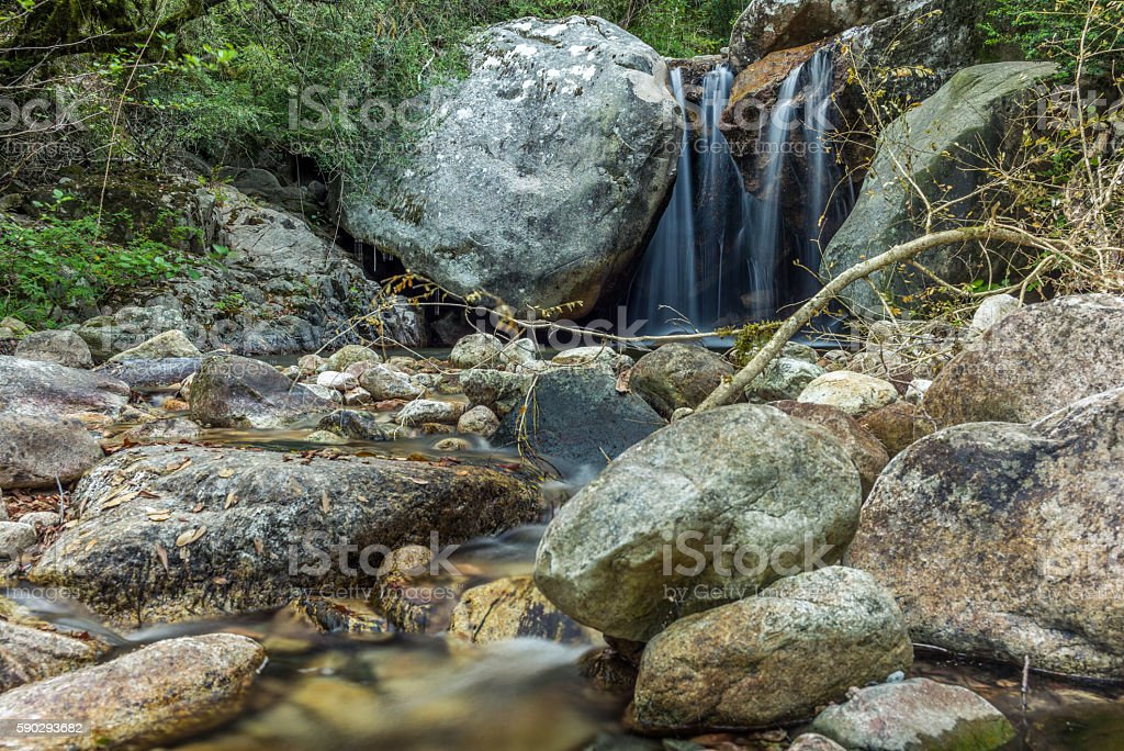 Secluded waterfall on the mountains in Corsica - 5 royaltyfri bildbanksbilder