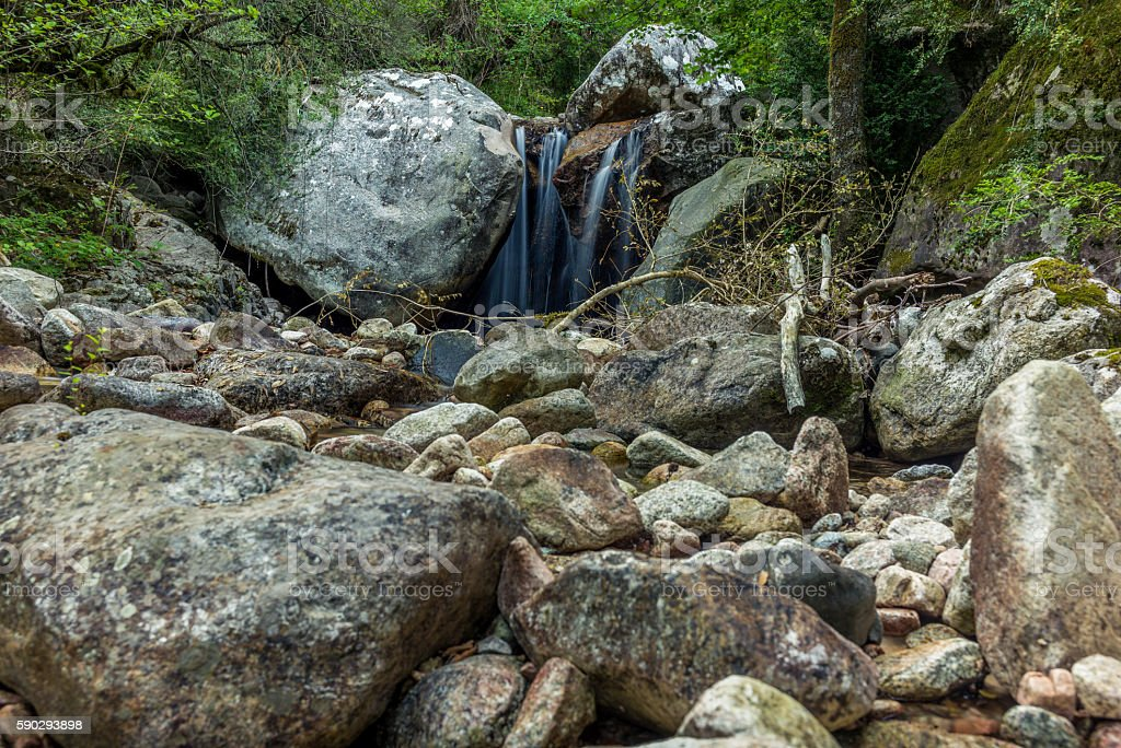 Secluded waterfall on the mountains in Corsica - 6 royaltyfri bildbanksbilder