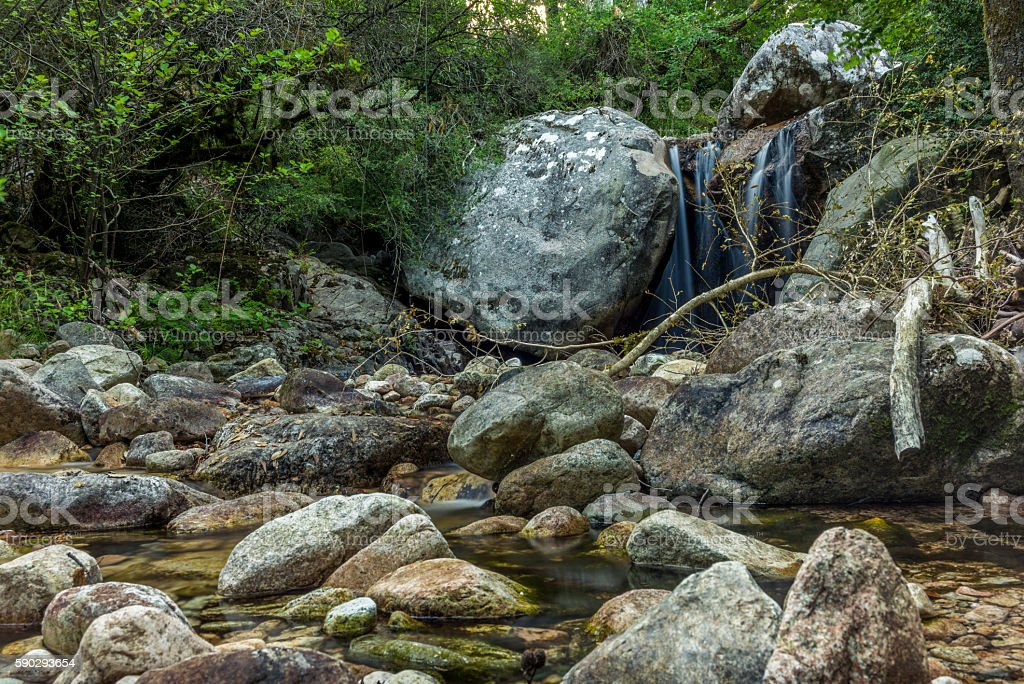 Secluded waterfall on the mountains in Corsica - 7 royaltyfri bildbanksbilder