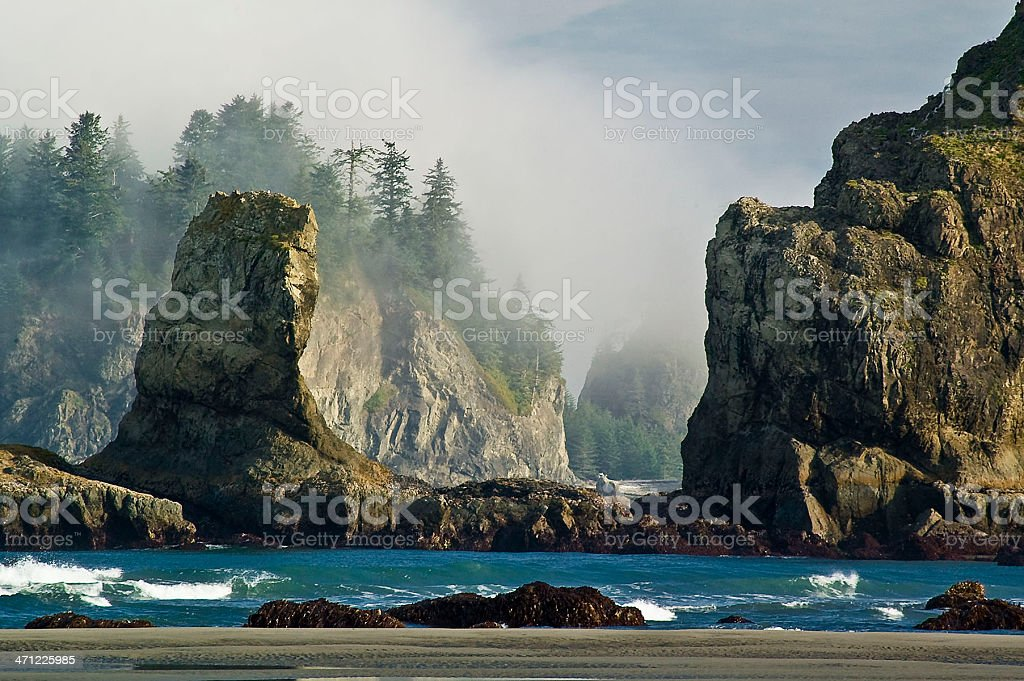 Second Beach Sea Stacks stock photo