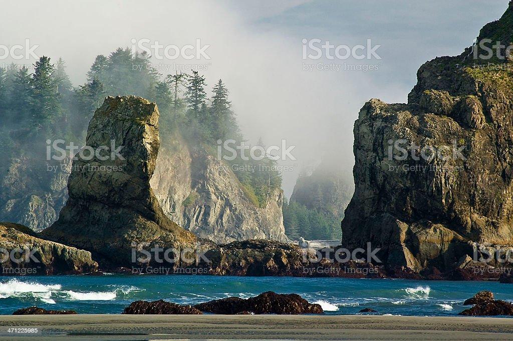 Second Beach Sea Stacks stock photo