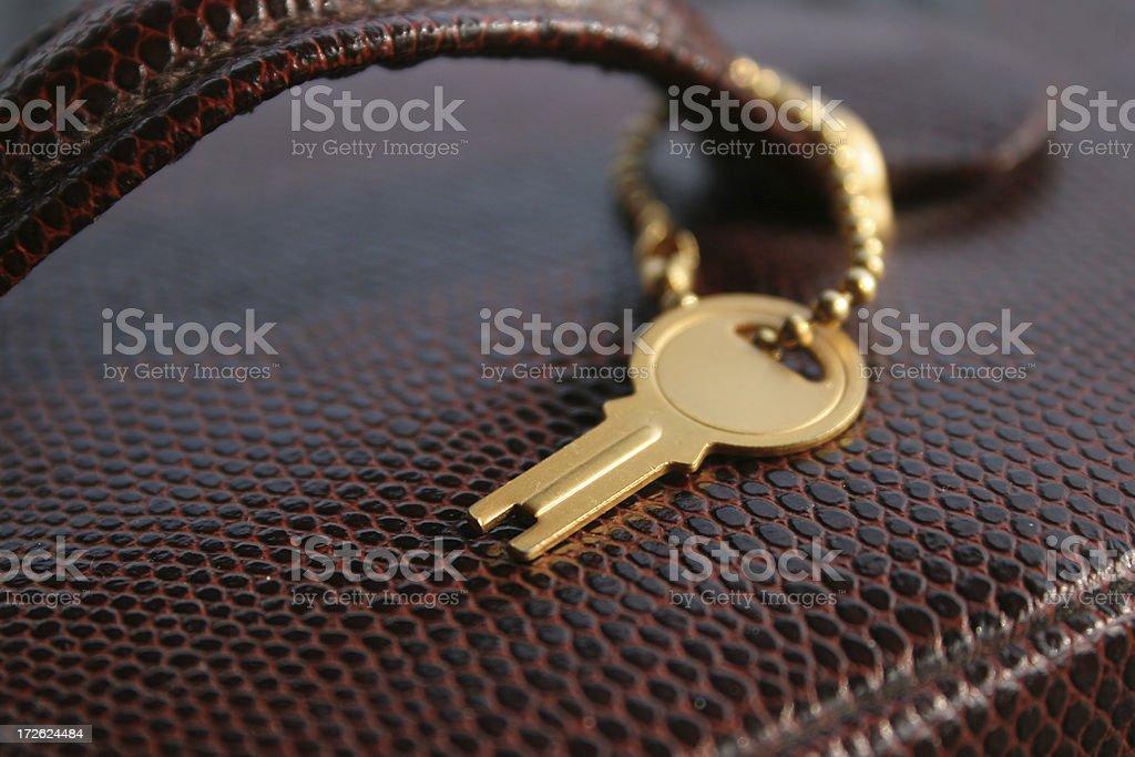 secret bag royalty-free stock photo
