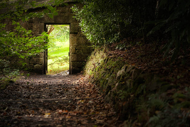 Secret Garden Gate A dark path leading to the gate of a bright walled garden. theasis stock pictures, royalty-free photos & images
