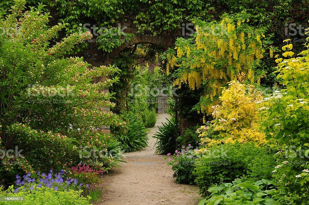 Geheimer Garten Stock Fotografie Und Mehr Bilder Von Blume Istock