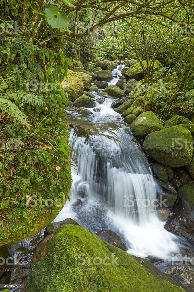 Secret waterfall in the wood stock photo