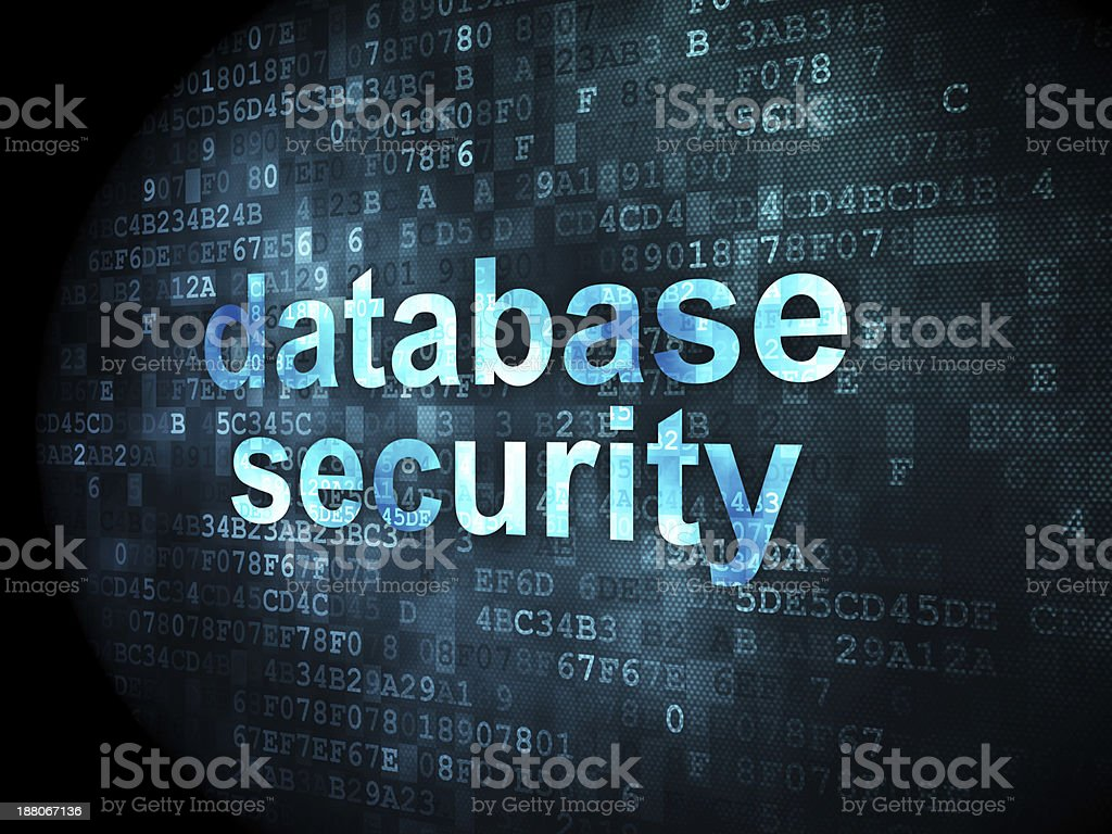 Security concept: database on digital background royalty-free stock photo