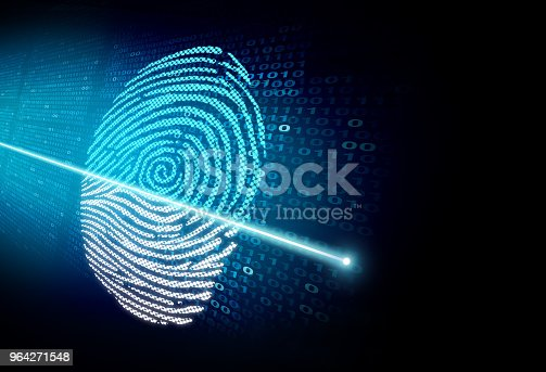 istock Security Scan 964271548