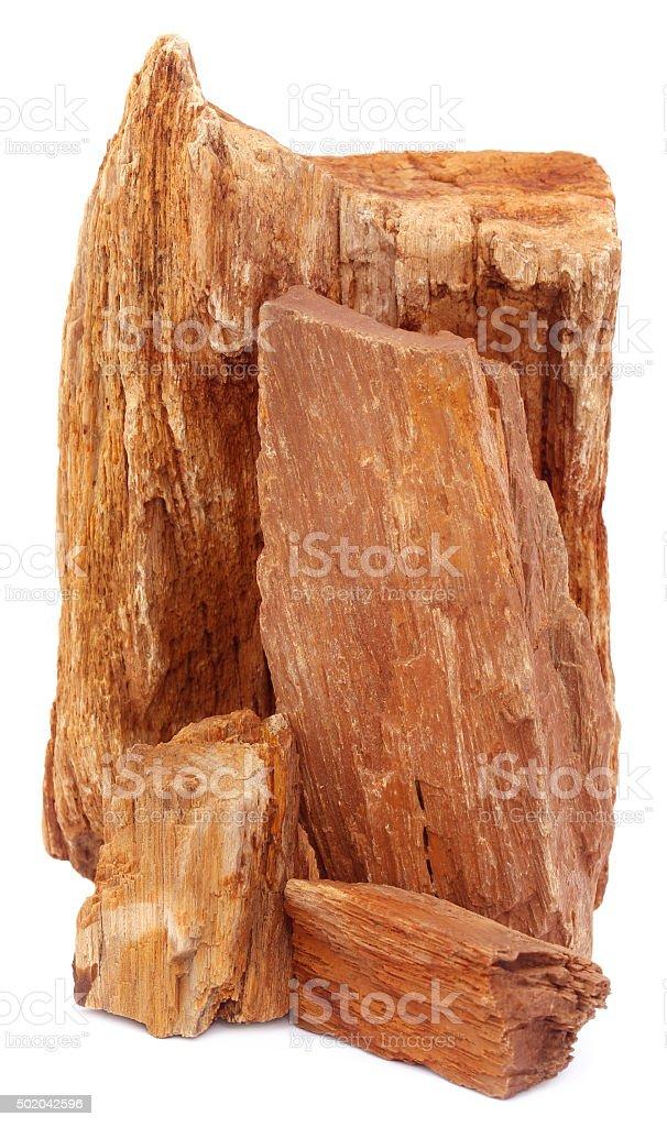 Sedimentary rocks stock photo