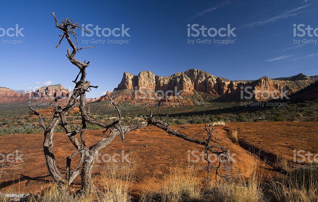 Sedona Landscape royalty-free stock photo