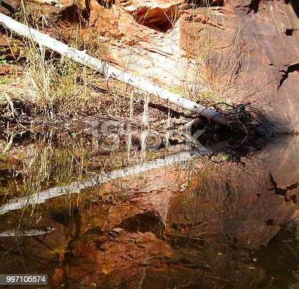Reflections of symmetry in the Oak Creek Canyon just out of Sedona.