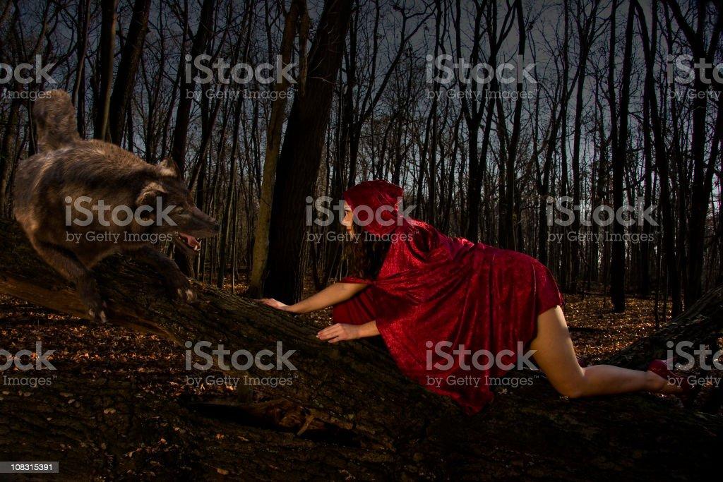 Seductive Red Riding Hood stock photo
