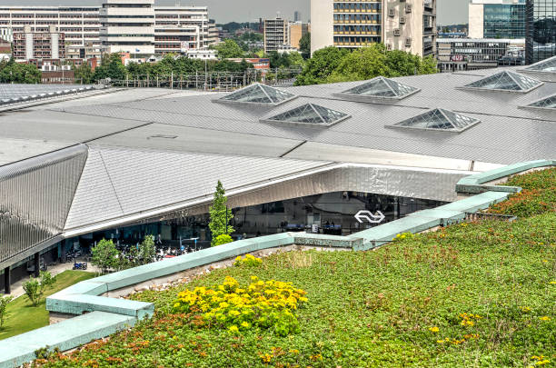 Sedum and stainless steel roofs Rotterdam, The Netherlands, June 3, 2018: view from the roof of Groothandelsgebouw, partly covered with sedum, towards the stainless steel roof of the central station sedum plant stock pictures, royalty-free photos & images