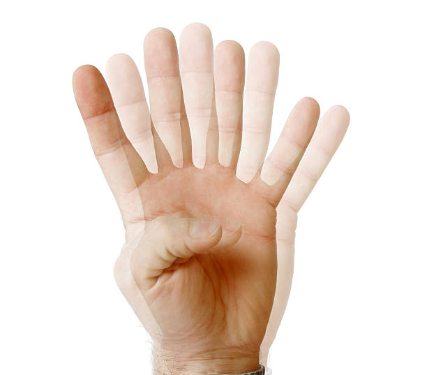 see fingers - symmetry stock photos and pictures