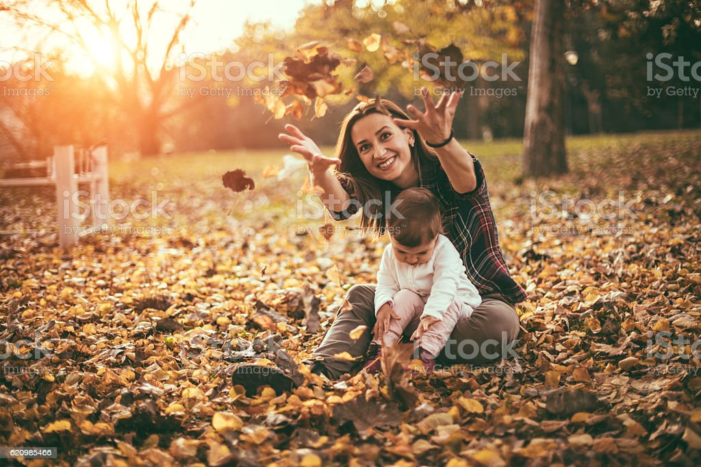 See how the leaves fall foto royalty-free