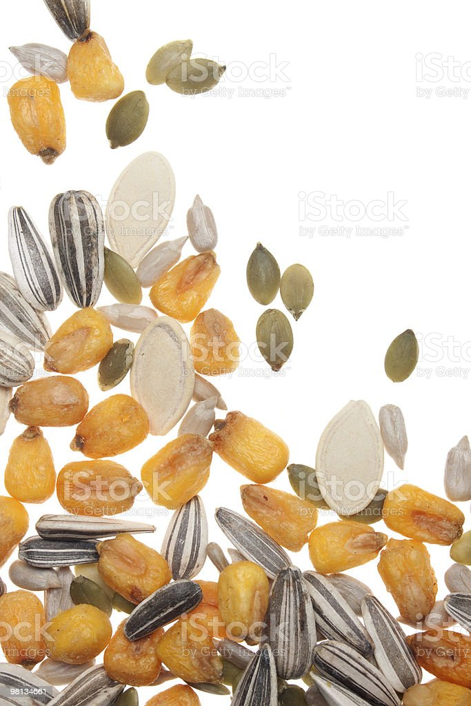 Seed and grain royalty-free stock photo
