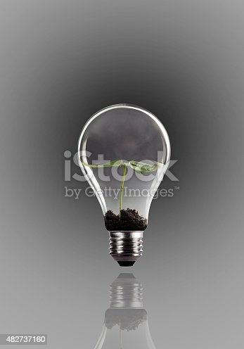 Seed growing in lightbulb on gray background.Used  color tool for gray color like as smoke in lightbulb and mirror.