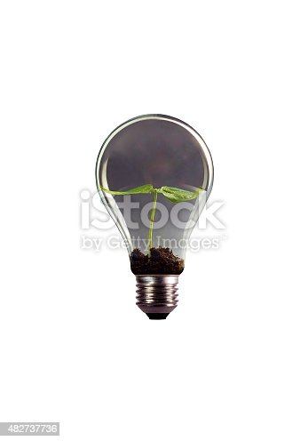 Seed growing in lightbulb on white background.Used  color tool for gray color like as smoke in lightbulb.