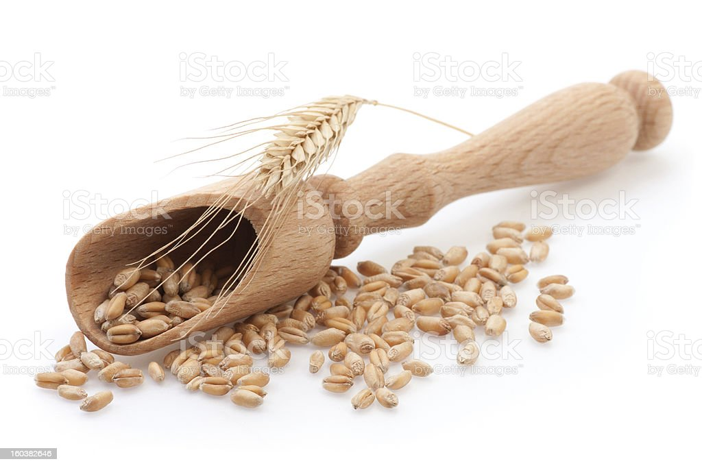 Seed in wooden scoop royalty-free stock photo