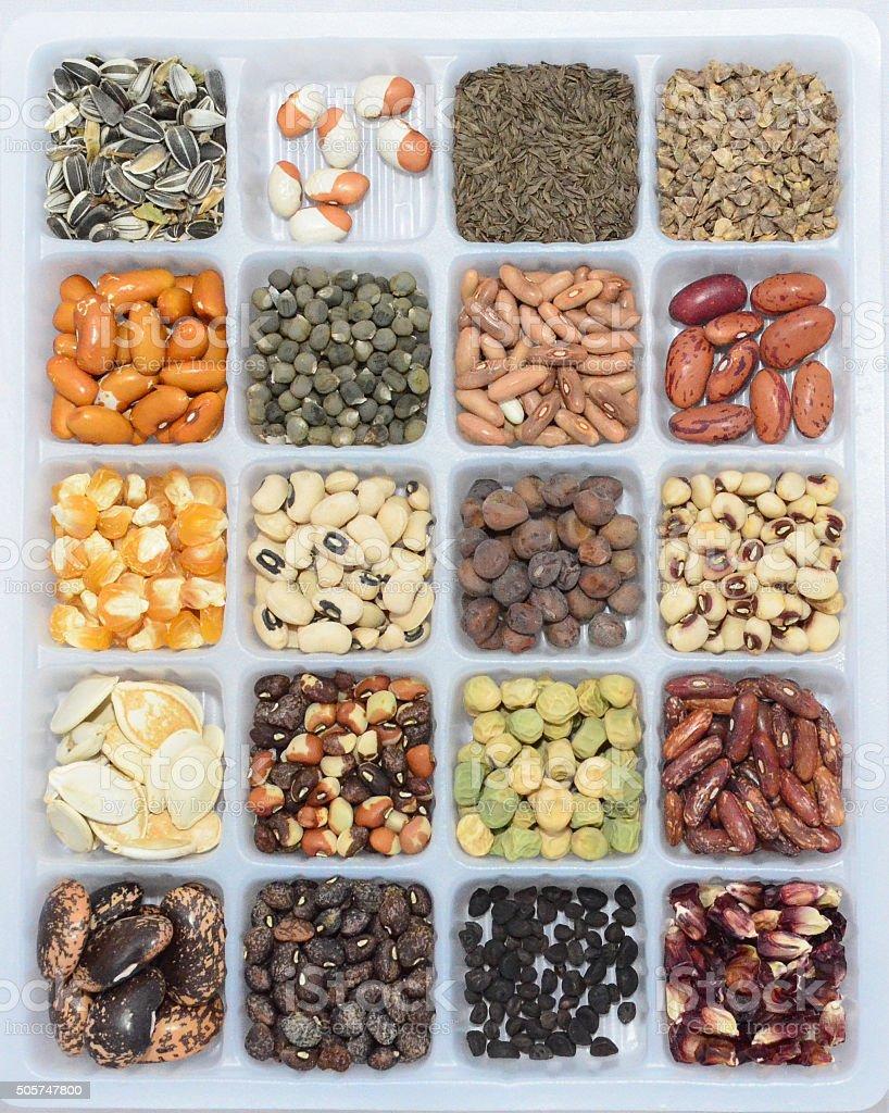 Seed Tray Garden Seeds stock photo