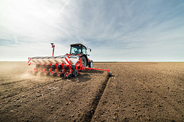 seeding crops at field - zaaien stockfoto's en -beelden