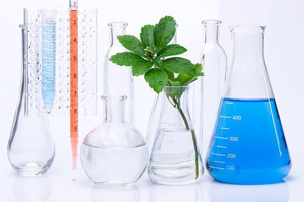 Plántula y química tubo de ensayo - foto de stock