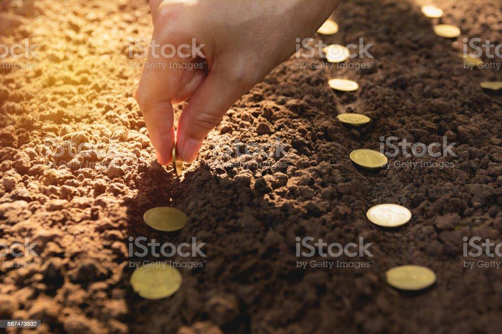 Sämling und rettende Konzept von menschlicher Hand, menschliche Aussaat Münzen im Boden für den Anbau von Geld. – Foto