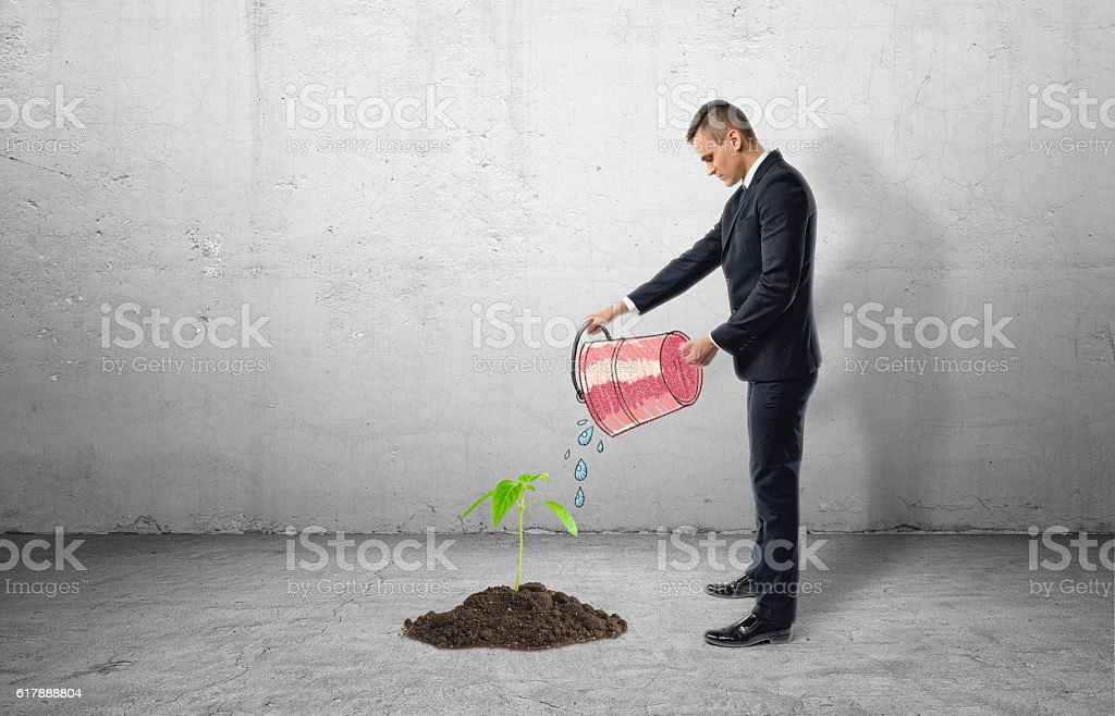 Seedling growing from cement and businessman using bucket to water stock photo