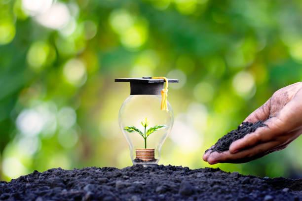 uma muda que cresce em uma moeda em uma lâmpada de economia de energia e um chapéu de pós-graduação em uma lâmpada de economia de energia, o conceito de investimento para educação e dinheiro. - vida de estudante - fotografias e filmes do acervo