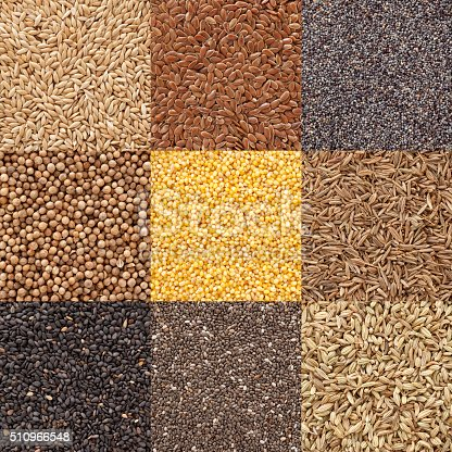 Digital composite of nine different backgrounds of seeds