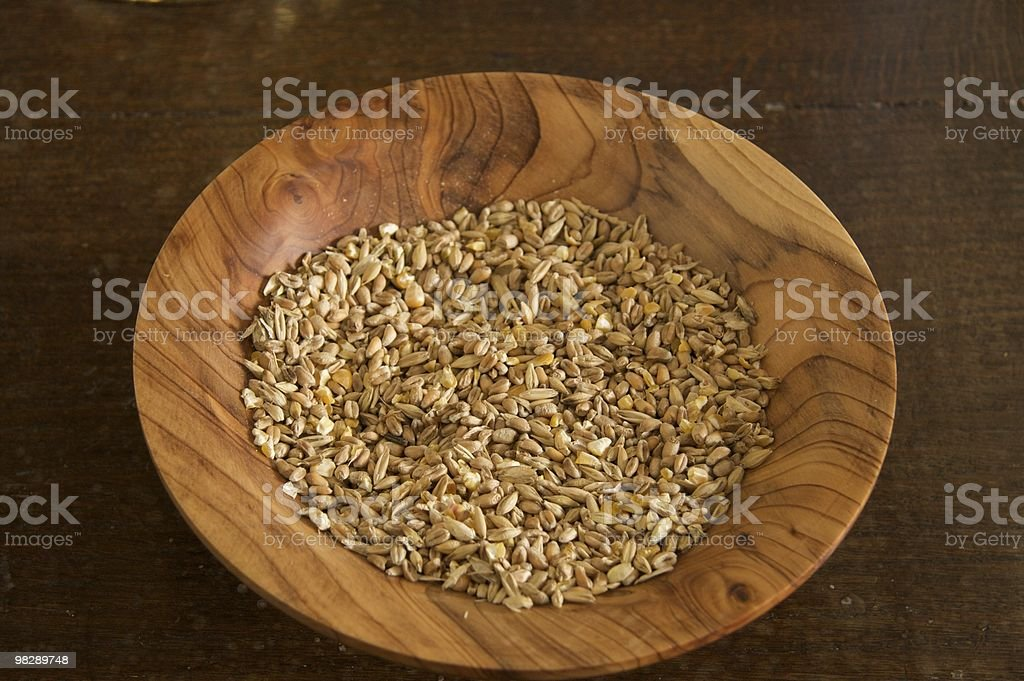 Seeds for sowing royalty-free stock photo