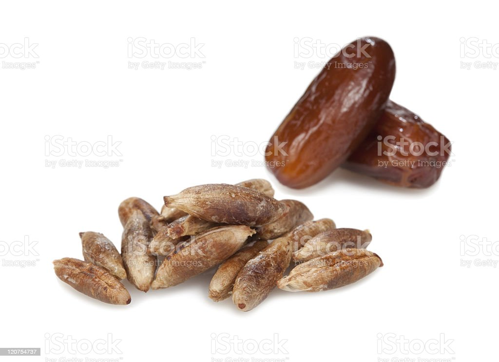 seeds from dates and figs. stock photo