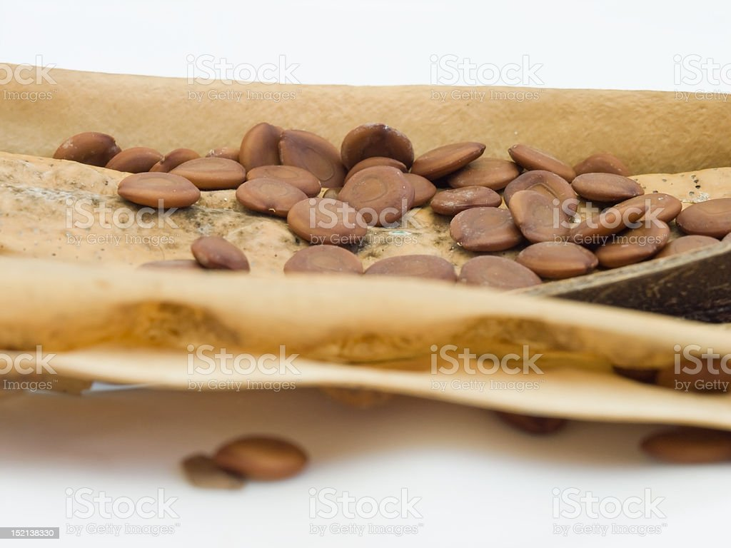 Seeds in pod stock photo