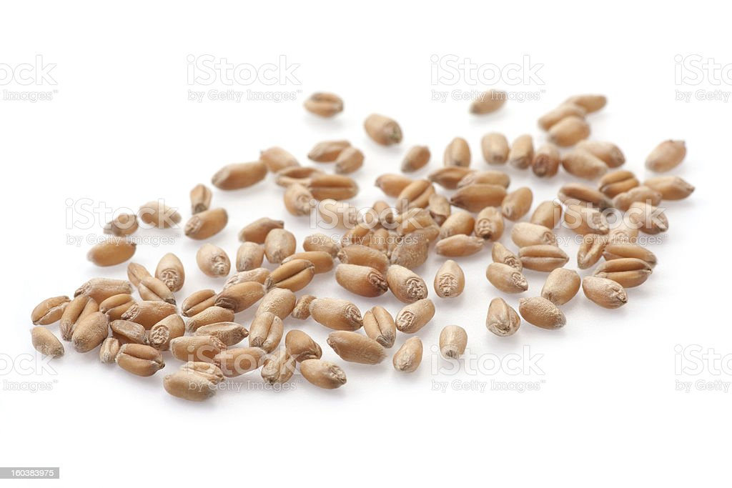 Seeds isolated on white royalty-free stock photo