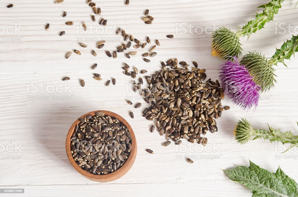 Seeds of a milk thistle with flowers on wooden table stock photo