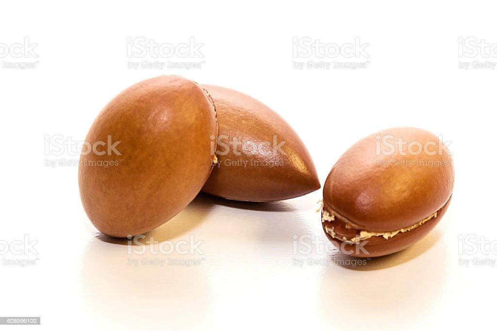 Seeds of argan oil stock photo