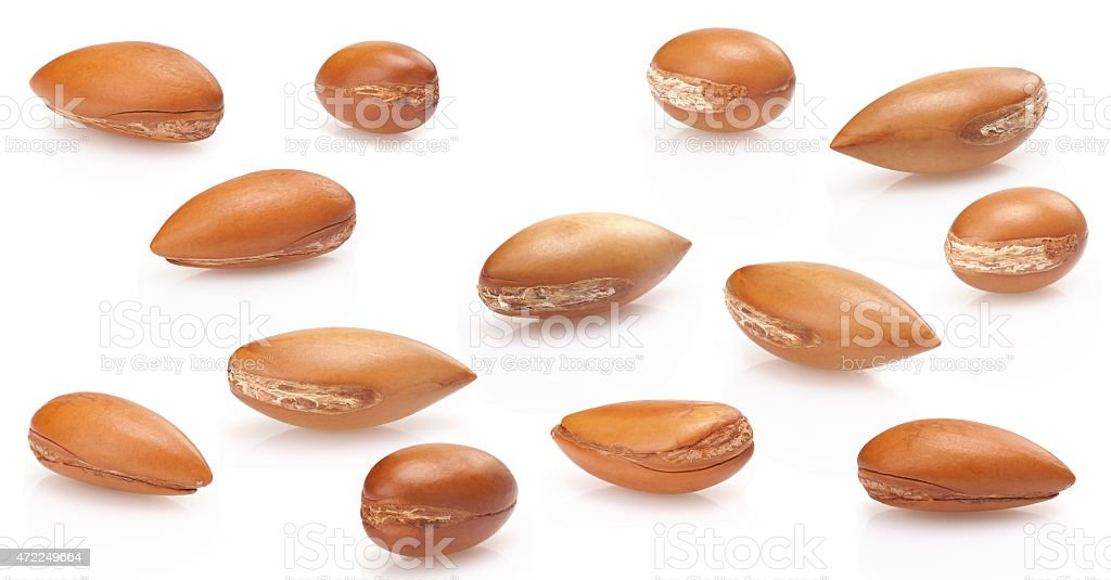 seeds of argan on white,a close up on white background stock photo