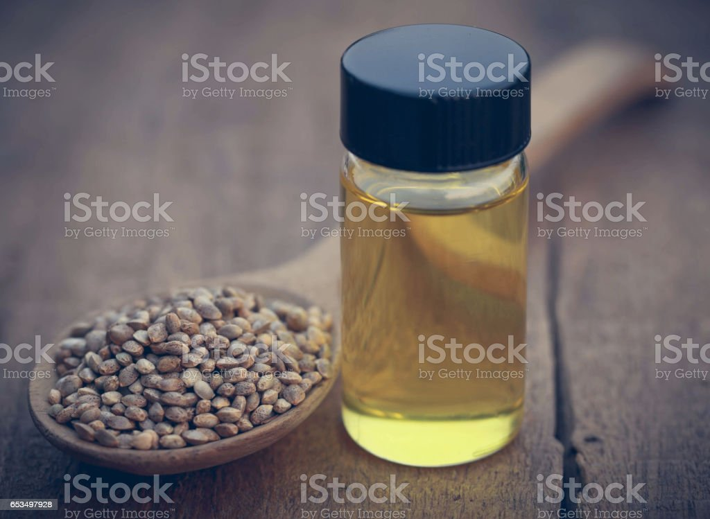 Seeds of Cannabis or hemp with essential oil in bottle stock photo