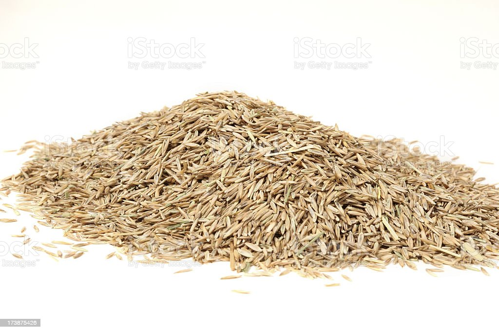 Seeds royalty-free stock photo