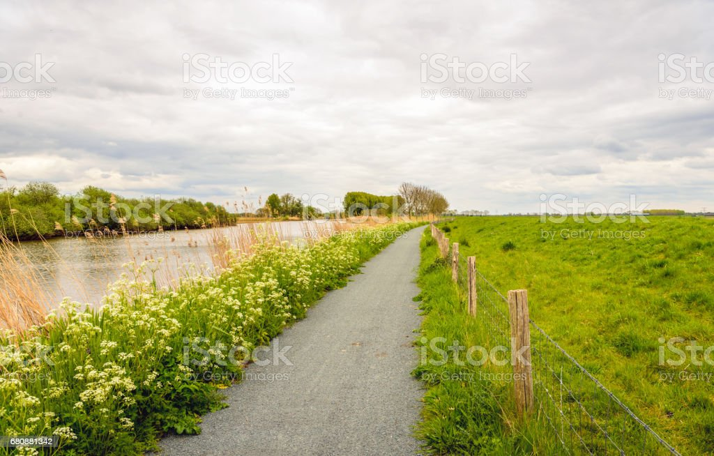 Seemingly endless cycle path next to a river royalty-free stock photo