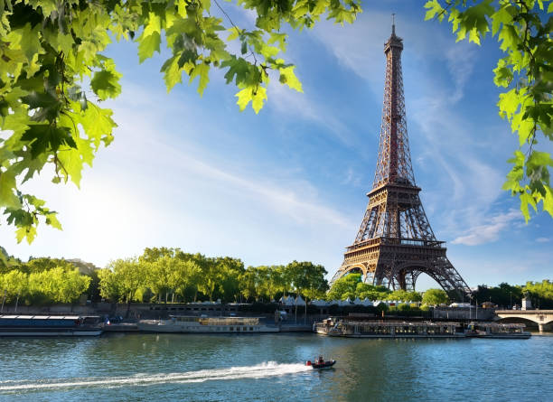 seine and eiffel tower - eiffel tower stock photos and pictures