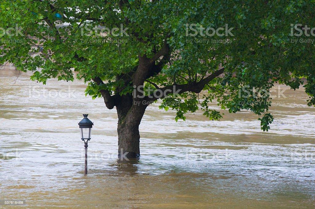 Fluss Seine Überschwemmungen in Paris – Foto