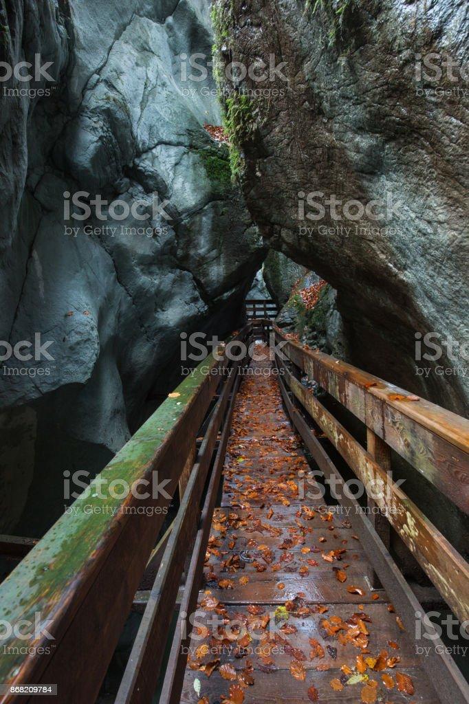 Seisenbergklamm im Herbst – Foto